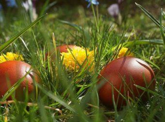 Απίστευτη Ελληνίδα γιαγιά: Η χειρόγραφη «βεβαίωση» για τα πασχαλινά αυγά (video)