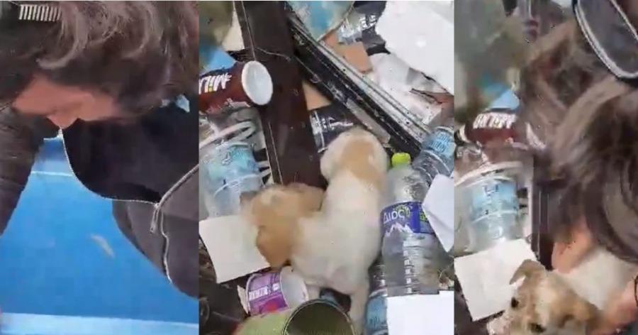 Ο ηθοποιός Βασίλης Χαραλαμπόπουλος έσωσε κουτάβι που βρήκε πεταμένο σε κάδο σκουπιδιών